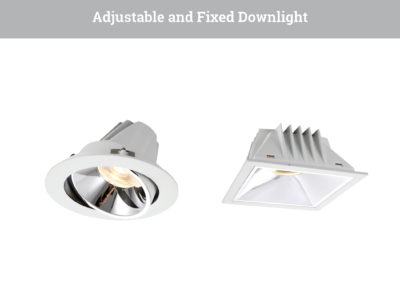 Adjustable_and_Fixed_Downlight